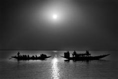 Sundarban_19