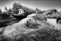 Sundarban_2