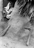 Sundarban_26