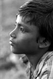 Sundarban_27