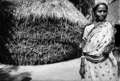 Sundarban_28