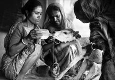 Sundarban_7