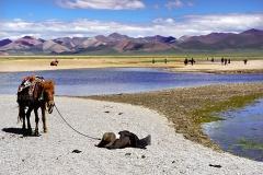 27-Tibet_namtso
